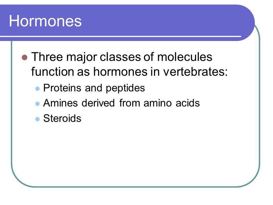 Hormones Three major classes of molecules function as hormones in vertebrates: Proteins and peptides.