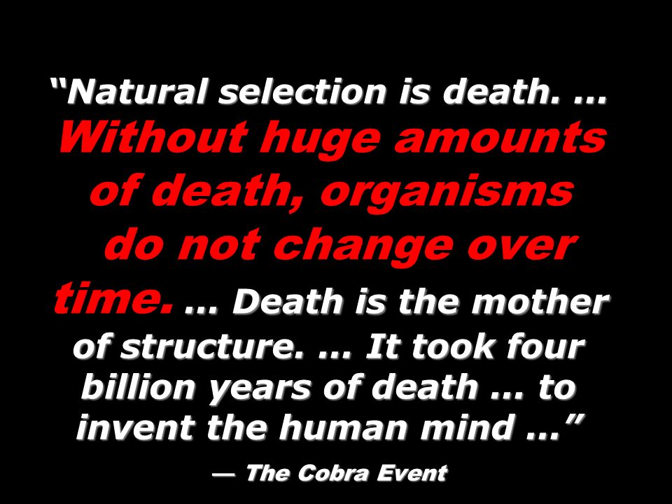 Natural selection is death