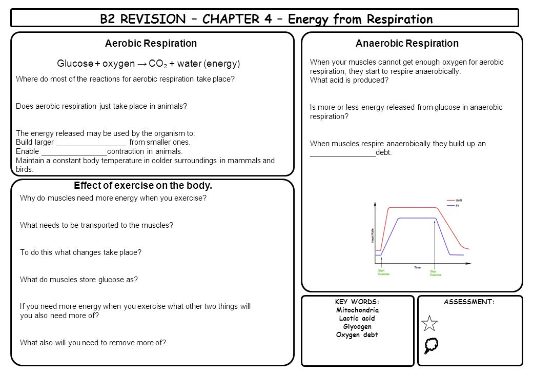 b2 revision Revision notes, summary sheets with key points, checklists, worksheets, topic questions and papers for aqa, edexcel, ocr, mei core 2 maths a-level.