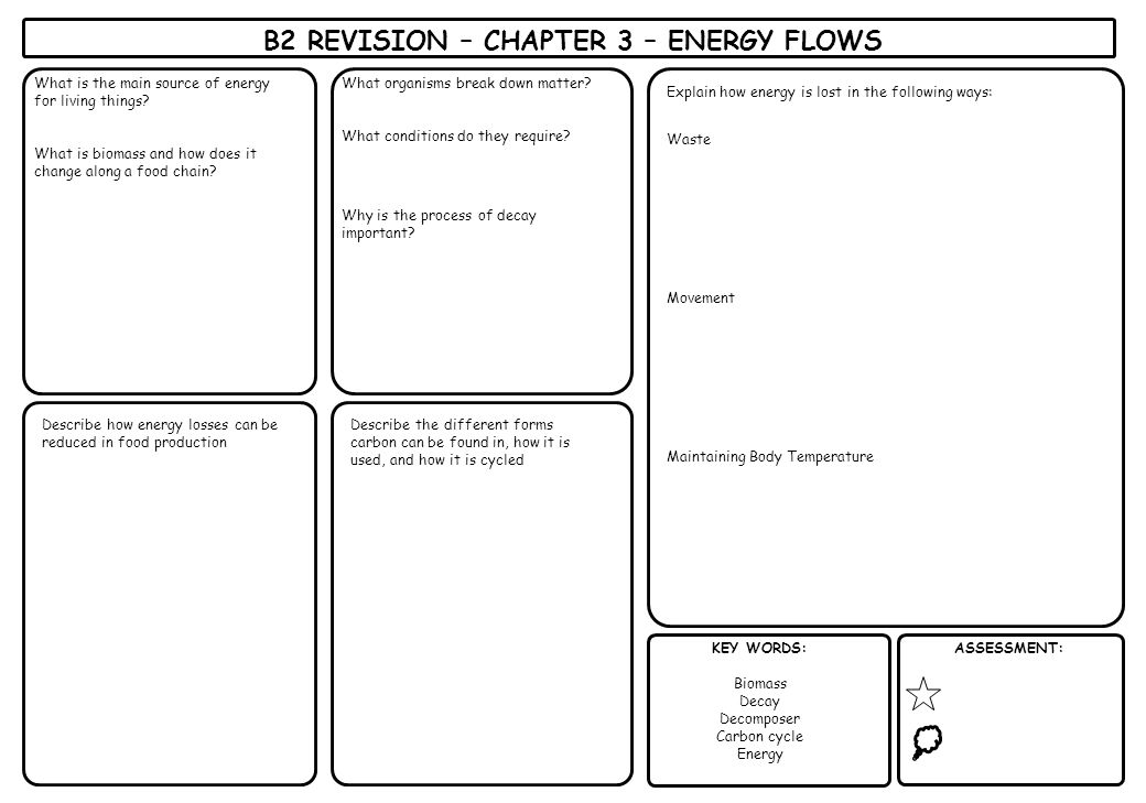 B2 REVISION – CHAPTER 3 – ENERGY FLOWS