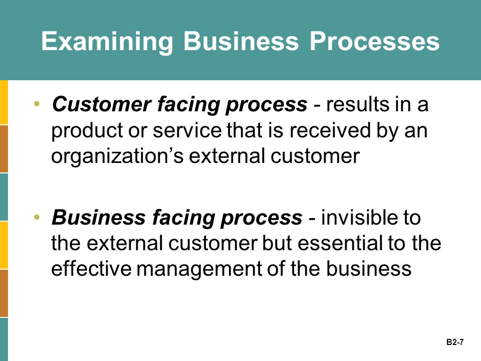 Examining Business Processes