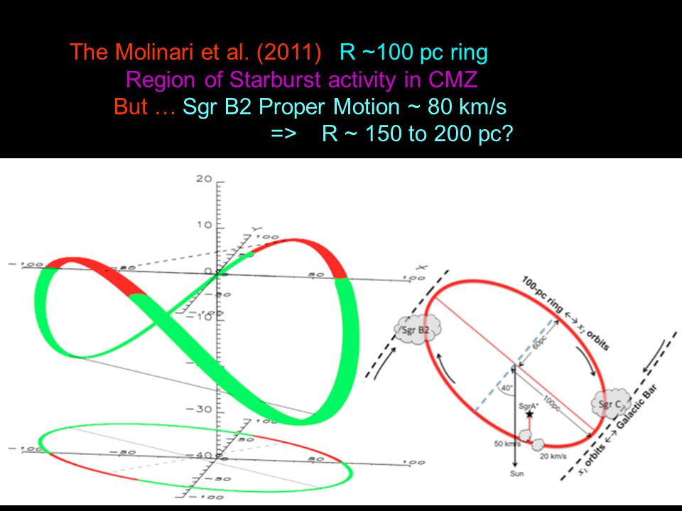 The Molinari et al. (2011) R ~100 pc ring