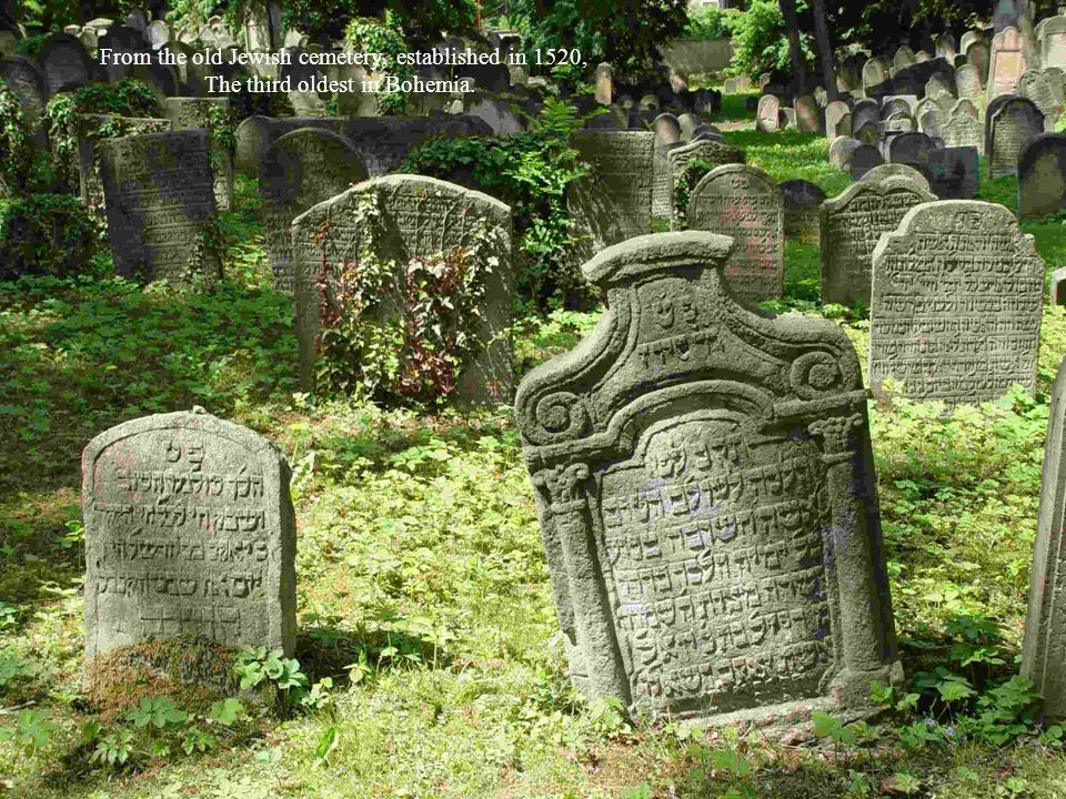 From the old Jewish cemetery, established in 1520,