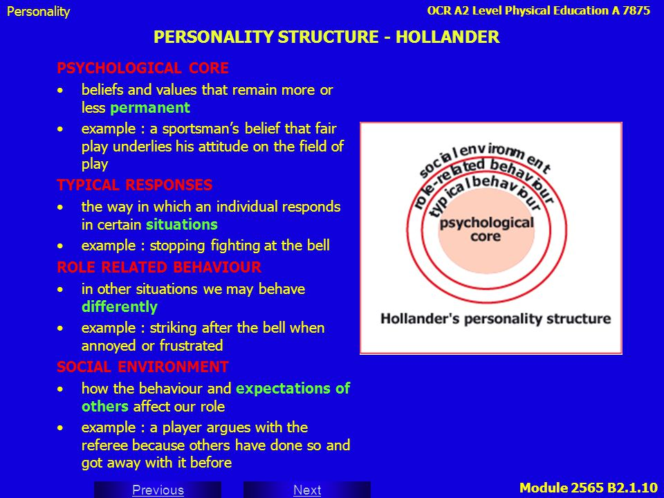PERSONALITY STRUCTURE - HOLLANDER
