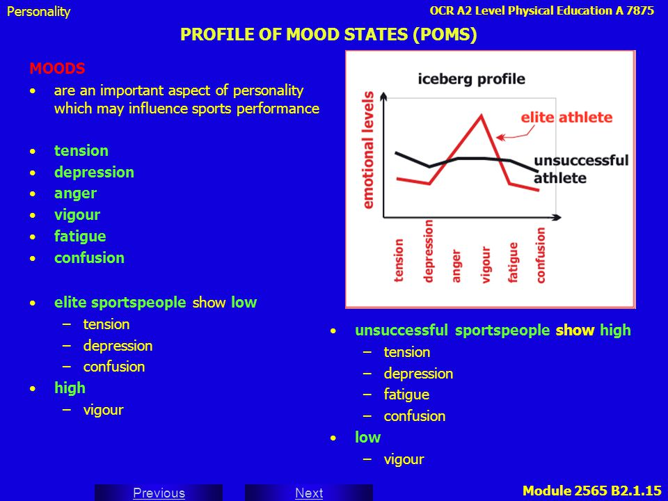 profile of mood state questionnaire pdf