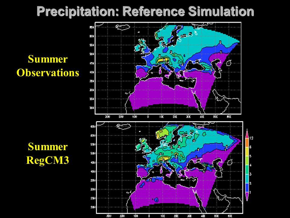 Precipitation: Reference Simulation