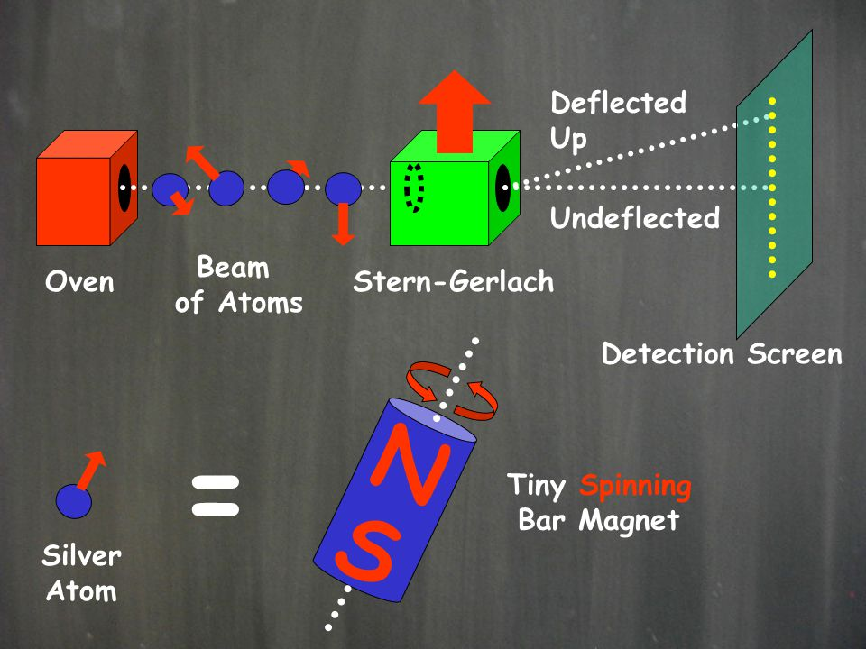 = N S Deflected Up Undeflected Beam of Atoms Oven Stern-Gerlach