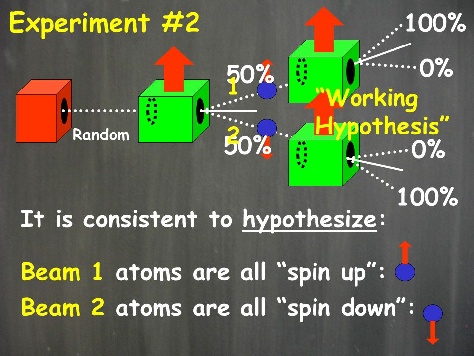 Experiment #2 100% 0% 50% 1 Working Hypothesis 2 50% 0% 100%