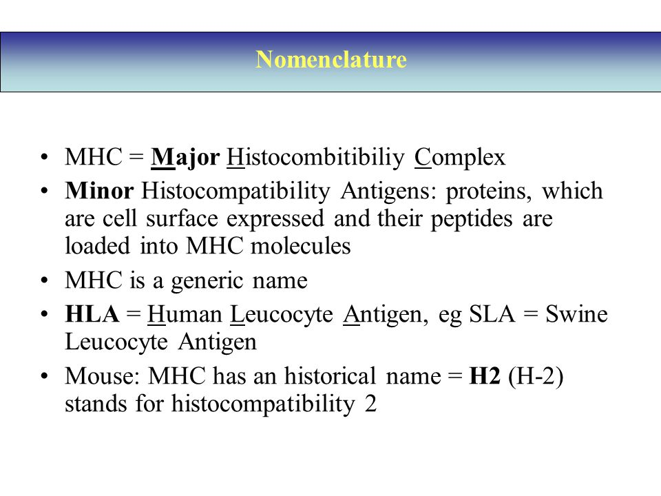 Nomenclature MHC = Major Histocombitibiliy Complex.