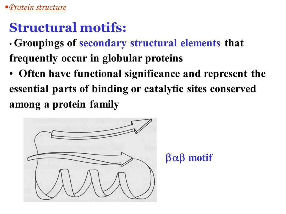 Protein structure Structural motifs: Groupings of secondary structural elements that frequently occur in globular proteins.