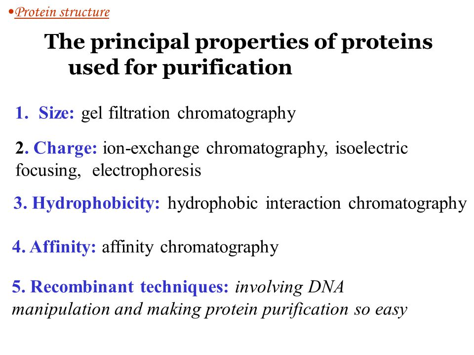 The principal properties of proteins used for purification