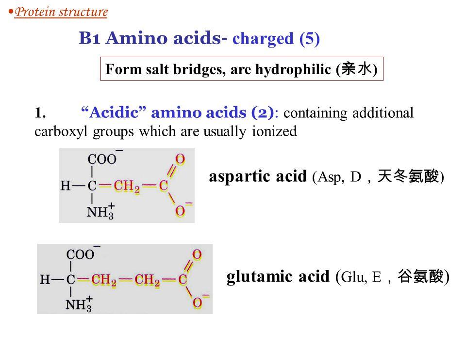 B1 Amino acids- charged (5)