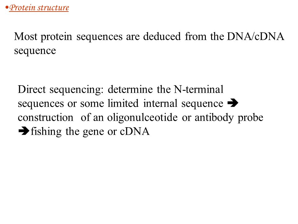 Most protein sequences are deduced from the DNA/cDNA sequence