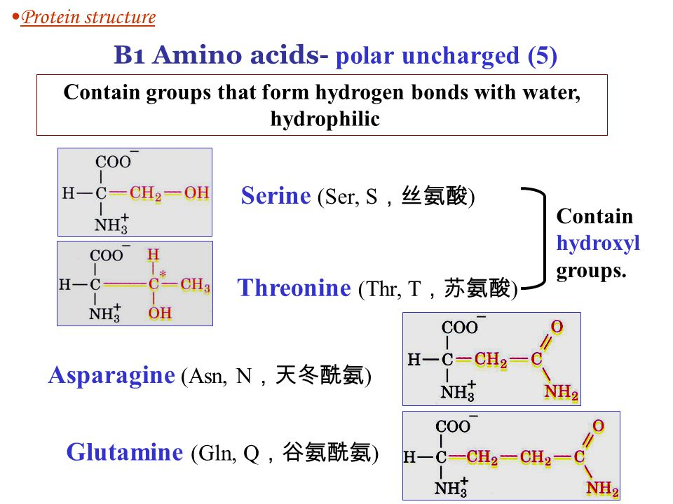 Contain groups that form hydrogen bonds with water,
