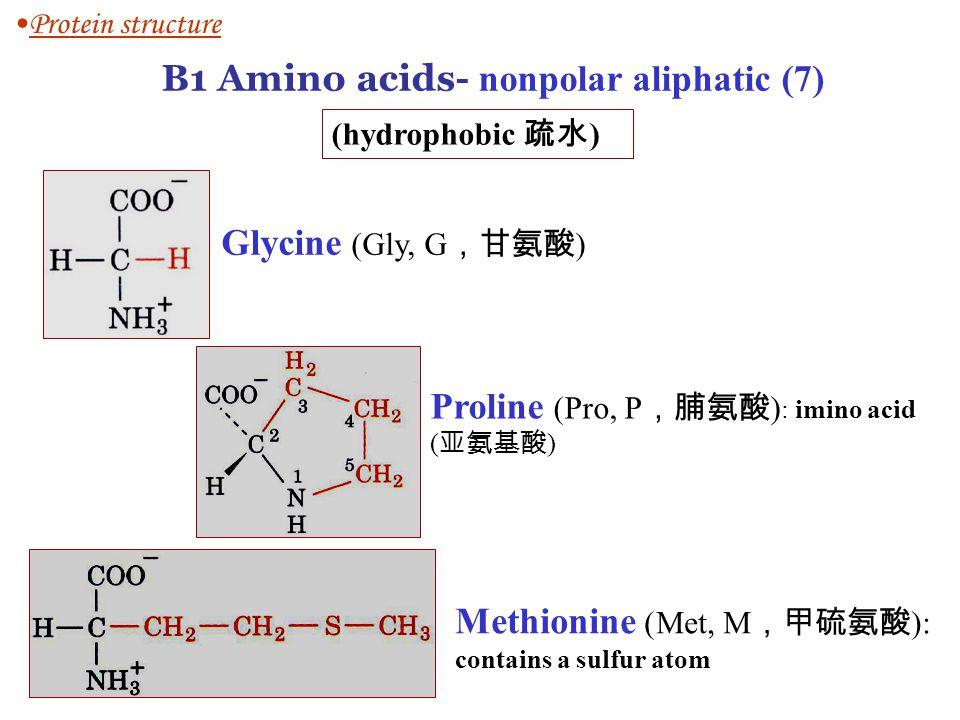 B1 Amino acids- nonpolar aliphatic (7)