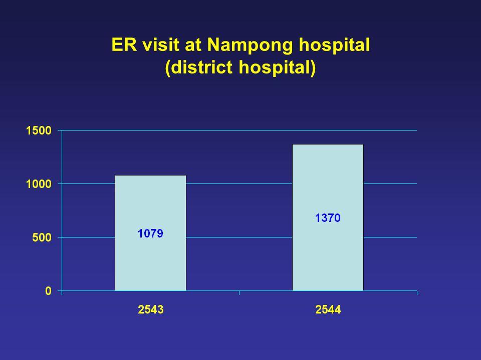 ER visit at Nampong hospital (district hospital)