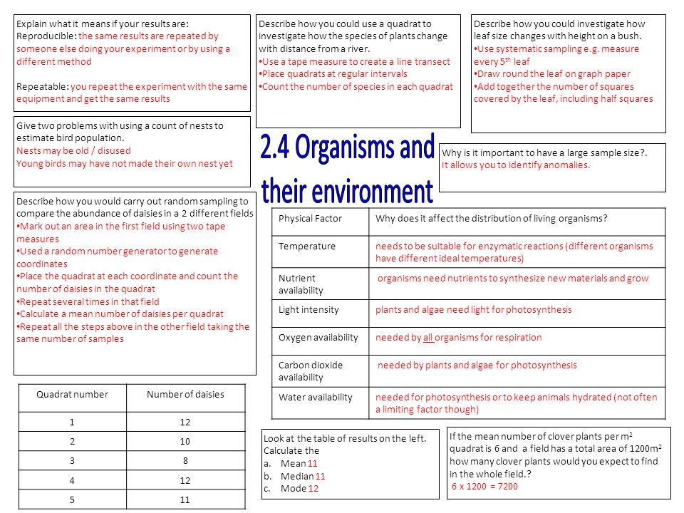 2.4 Organisms and their environment