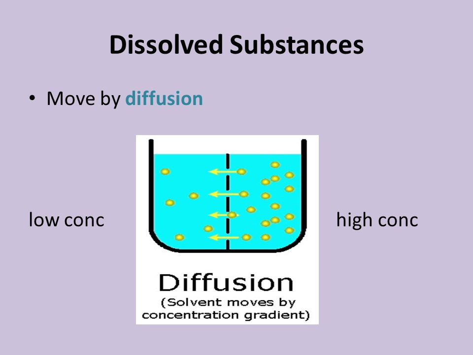 Dissolved Substances Move by diffusion low conc high conc