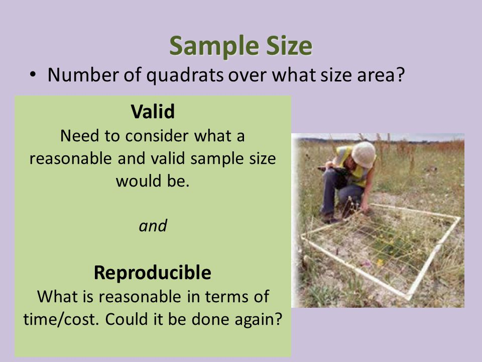 Sample Size Number of quadrats over what size area Valid Reproducible