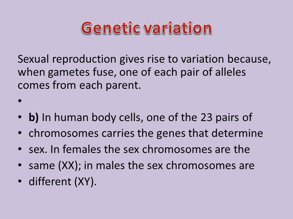 Genetic variation Sexual reproduction gives rise to variation because, when gametes fuse, one of each pair of alleles comes from each parent.