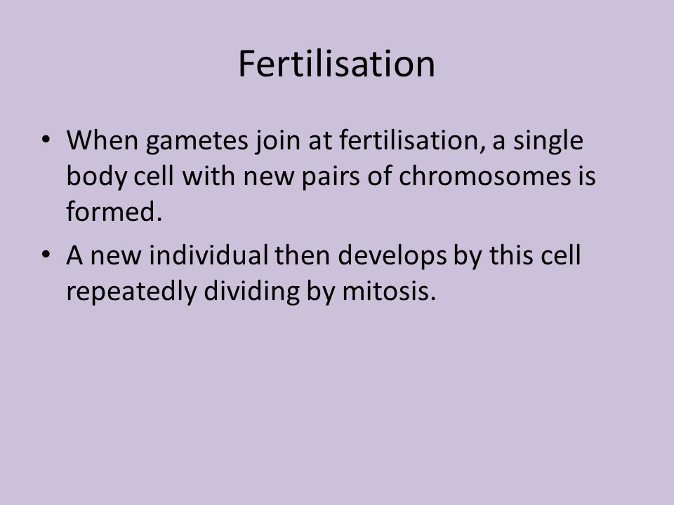 Fertilisation When gametes join at fertilisation, a single body cell with new pairs of chromosomes is formed.