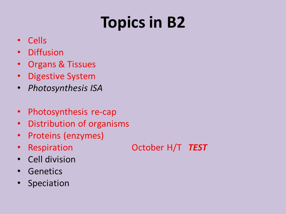 Topics in B2 Cells Diffusion Organs & Tissues Digestive System