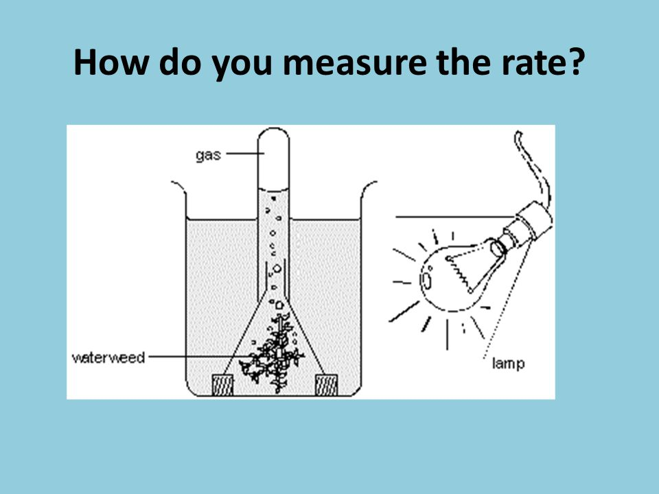 How do you measure the rate