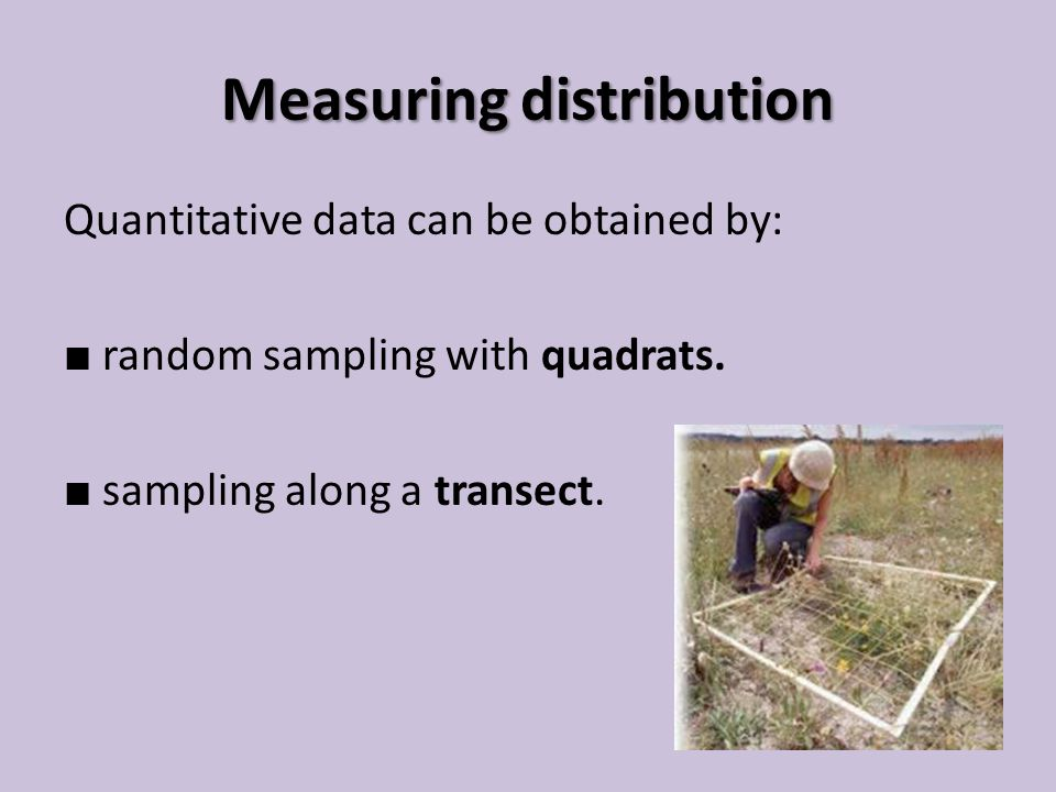 Measuring distribution