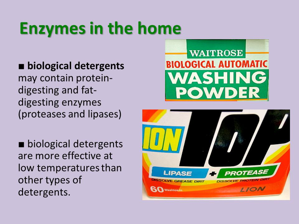 Enzymes in the home ■ biological detergents may contain protein-digesting and fat-digesting enzymes (proteases and lipases)