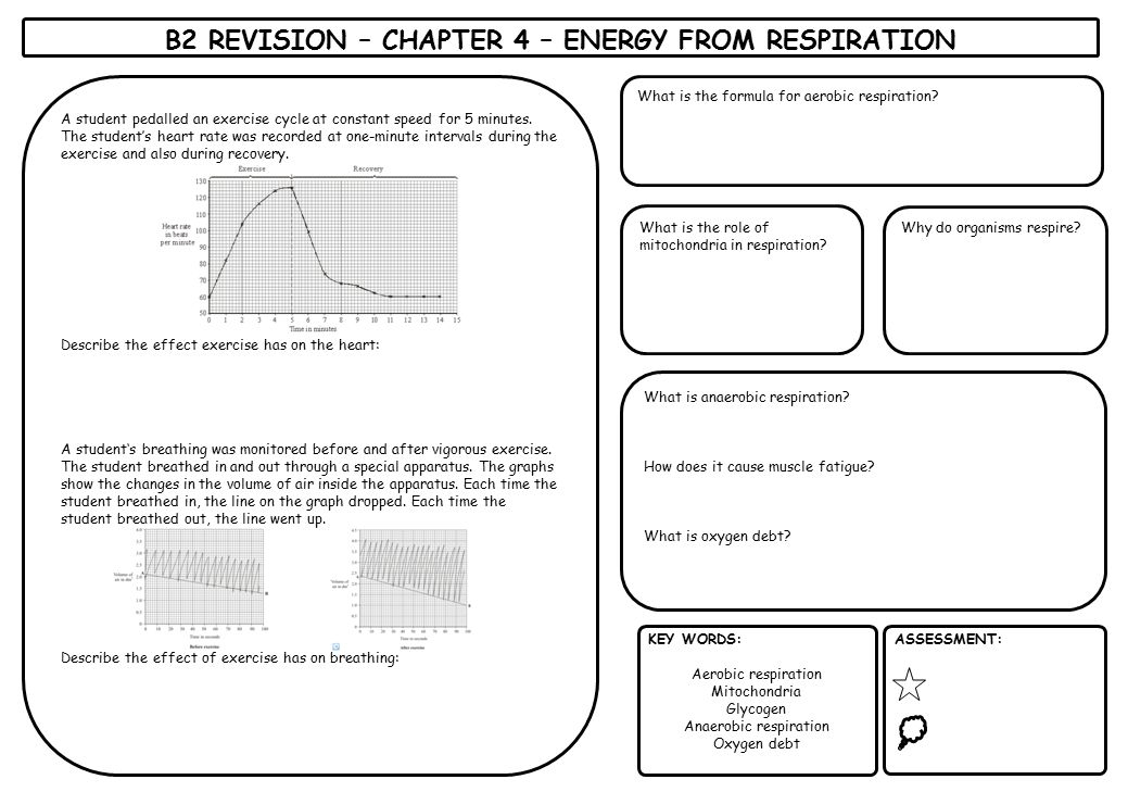 B2 REVISION – CHAPTER 4 – ENERGY FROM RESPIRATION