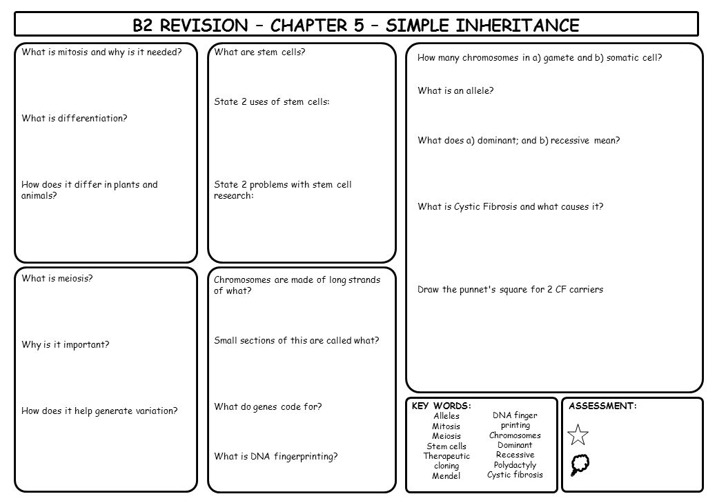 B2 REVISION – CHAPTER 5 – SIMPLE INHERITANCE