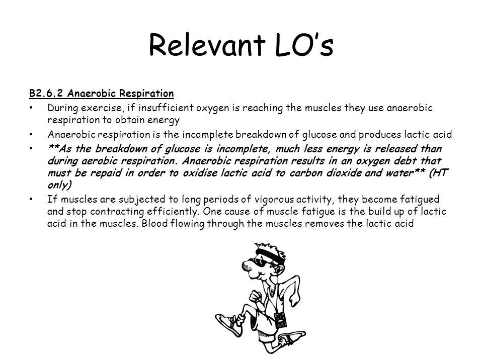 Relevant LO's B2.6.2 Anaerobic Respiration
