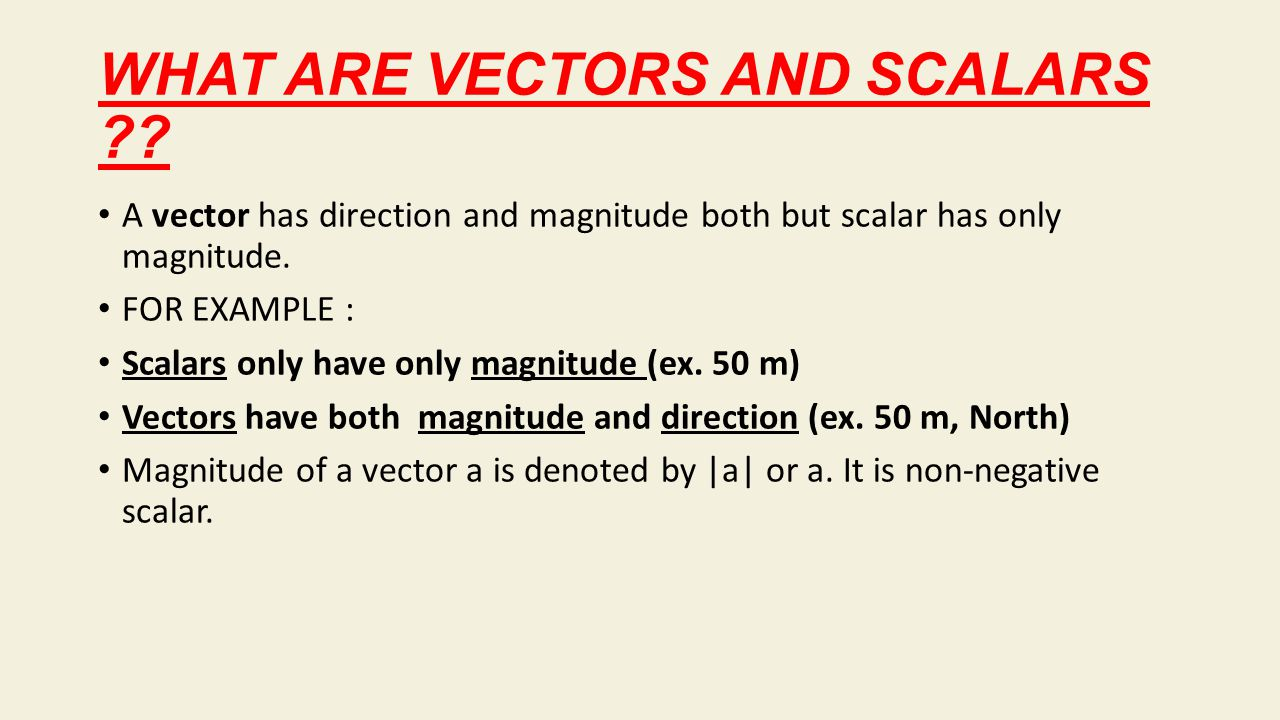 WHAT ARE VECTORS AND SCALARS