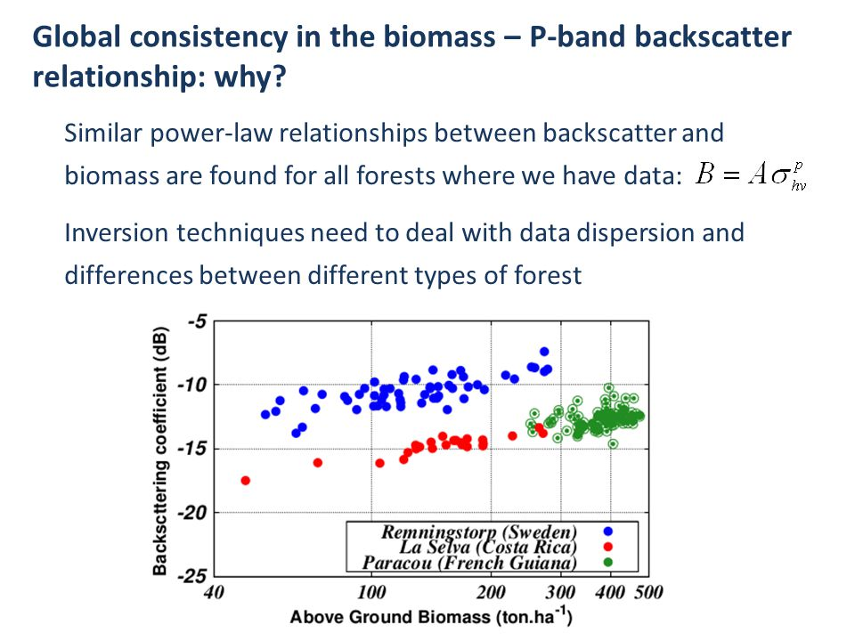 Global consistency in the biomass – P-band backscatter relationship: why