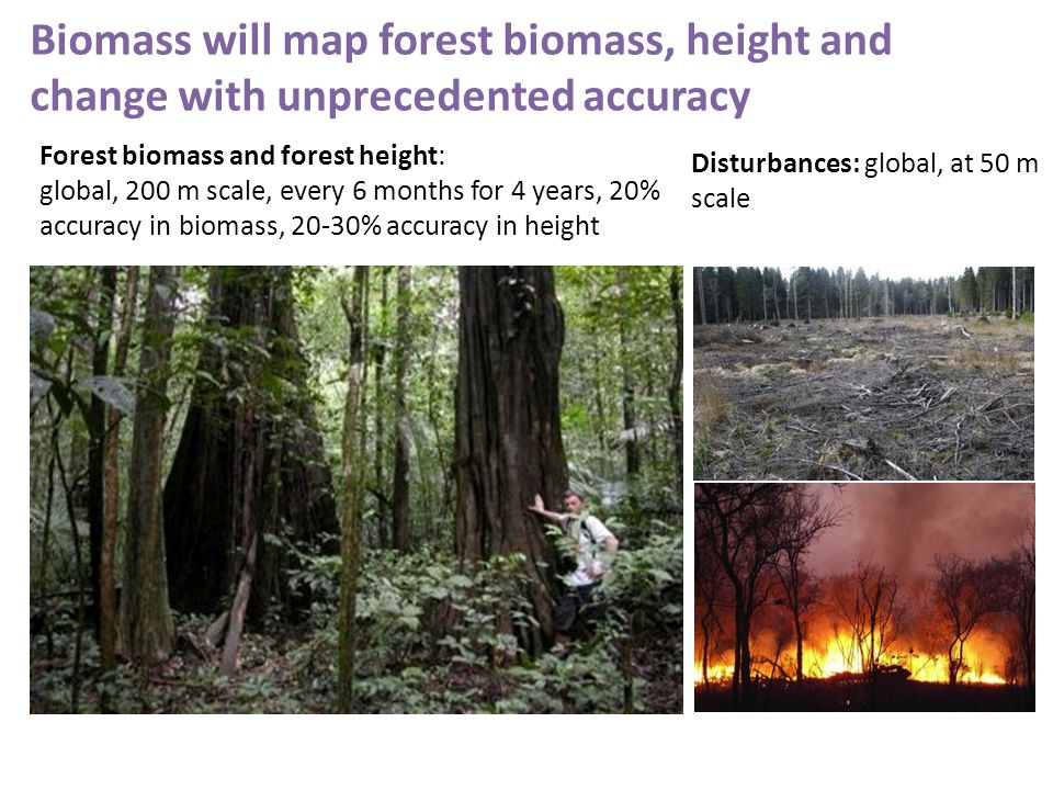 Biomass will map forest biomass, height and