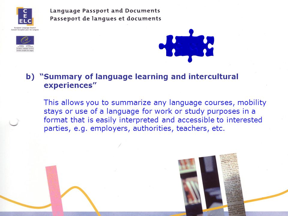 b) Summary of language learning and intercultural experiences