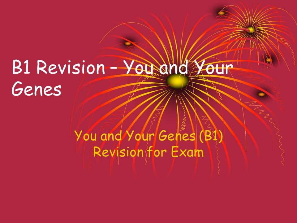B1 Revision – You and Your Genes