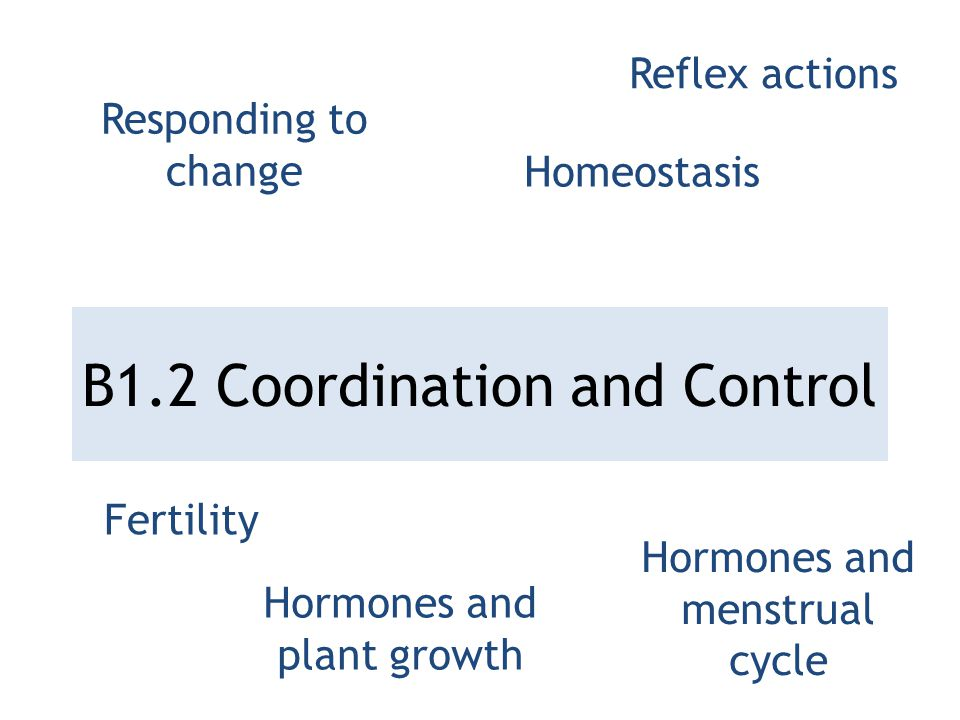 B1.2 Coordination and Control