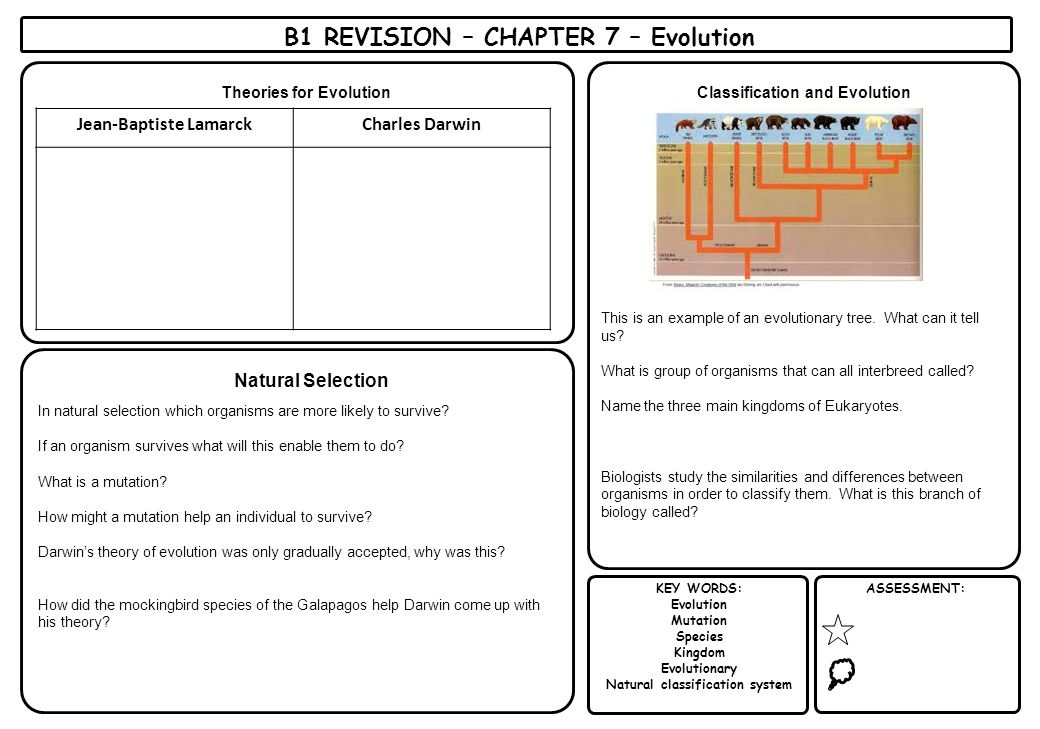 B1 REVISION – CHAPTER 7 – Evolution