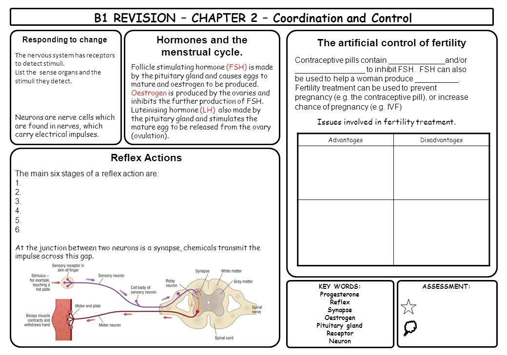 B1 REVISION – CHAPTER 2 – Coordination and Control