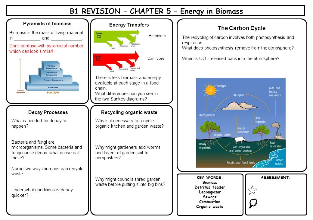 B1 REVISION – CHAPTER 5 – Energy in Biomass Recycling organic waste