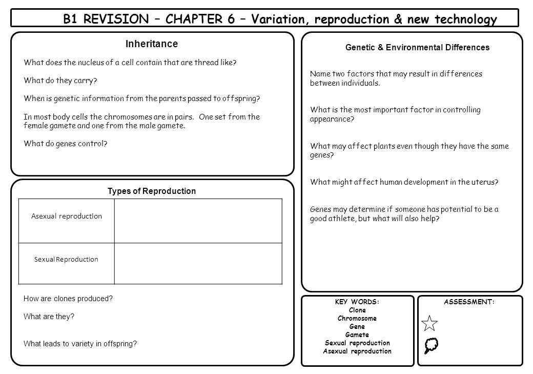 B1 REVISION – CHAPTER 6 – Variation, reproduction & new technology