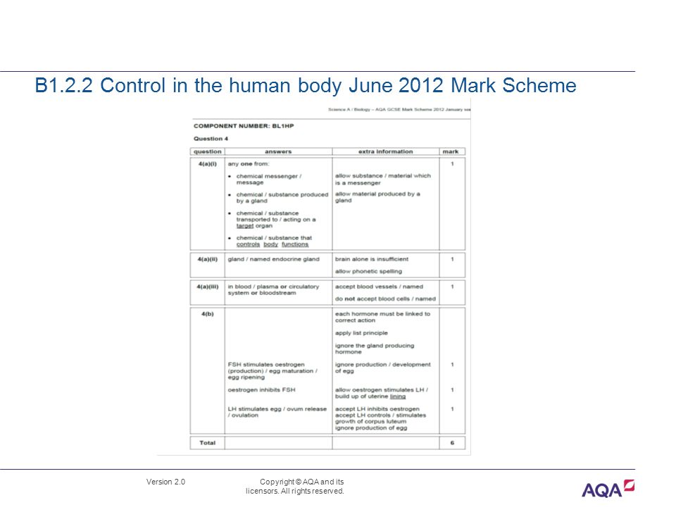 B1.2.2 Control in the human body June 2012 Mark Scheme