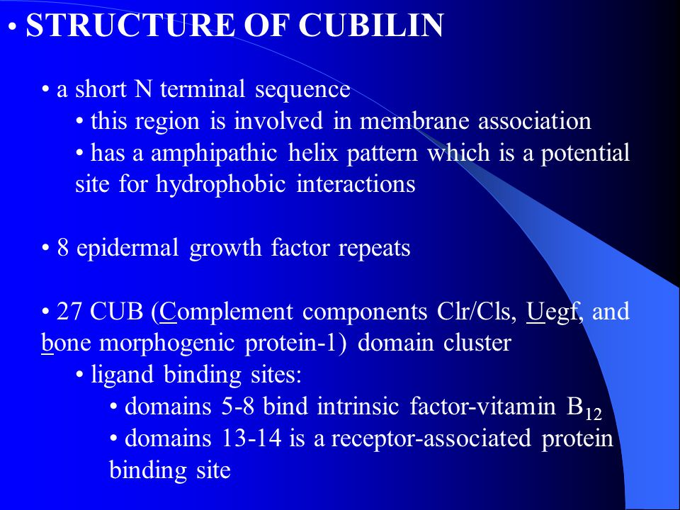 STRUCTURE OF CUBILIN a short N terminal sequence
