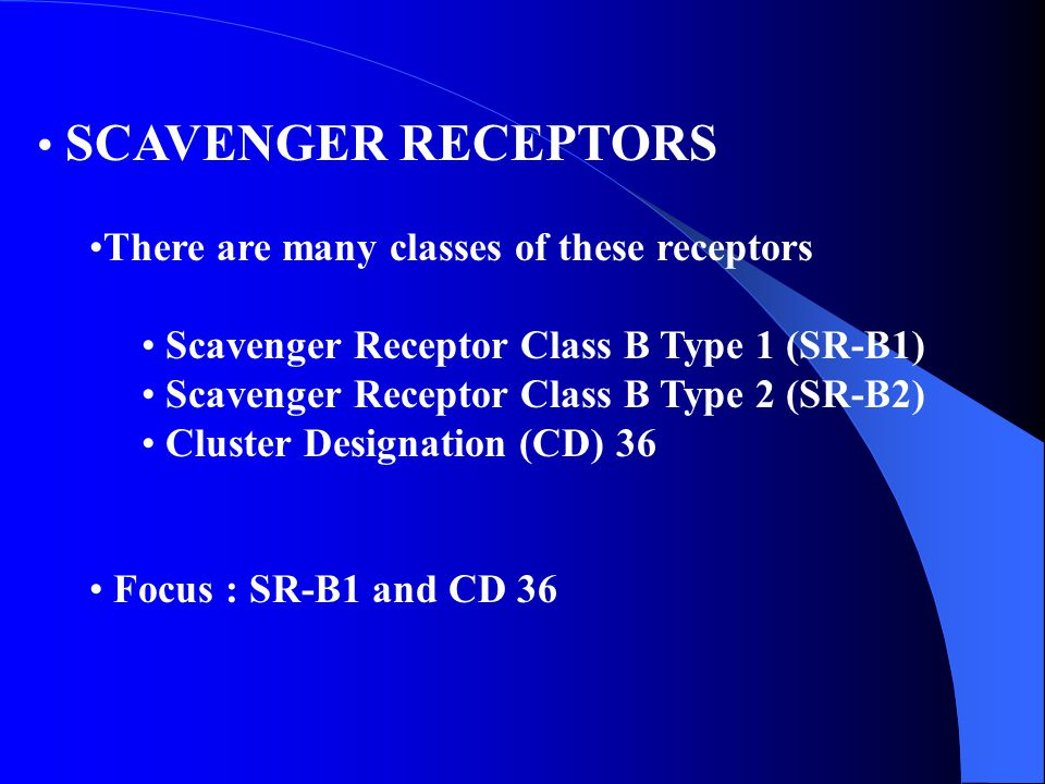 SCAVENGER RECEPTORS There are many classes of these receptors