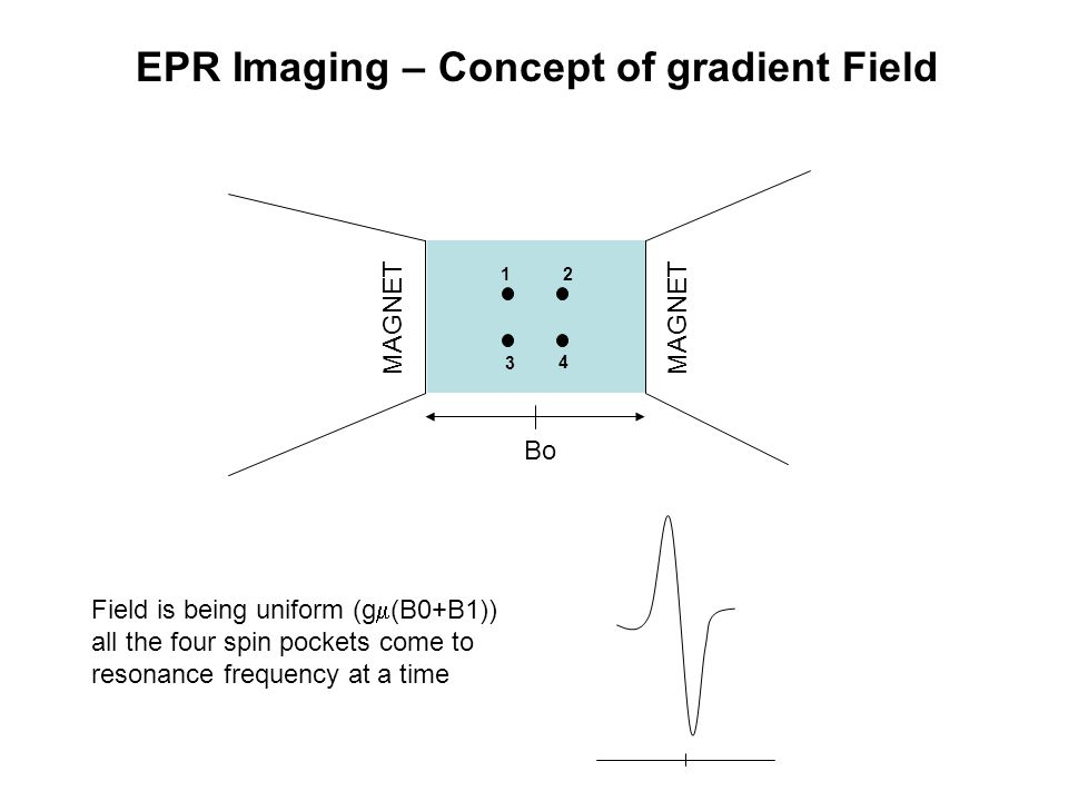 EPR Imaging – Concept of gradient Field