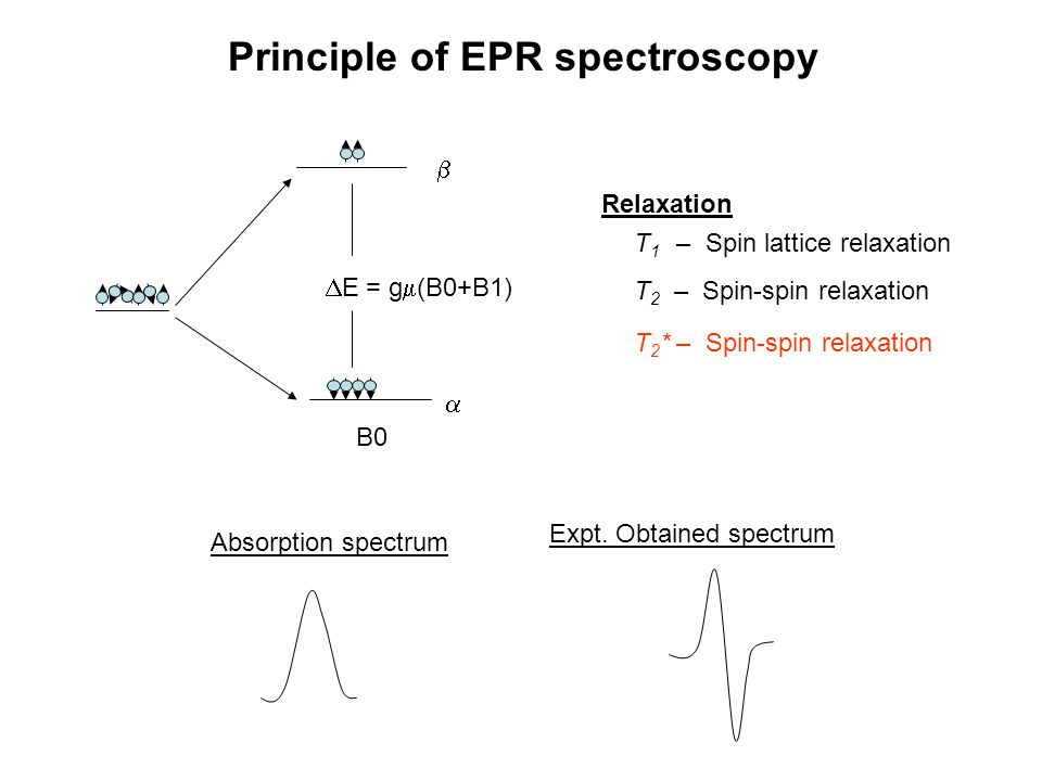 Principle of EPR spectroscopy