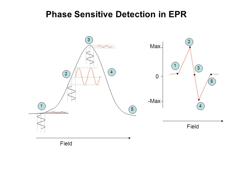 Phase Sensitive Detection in EPR