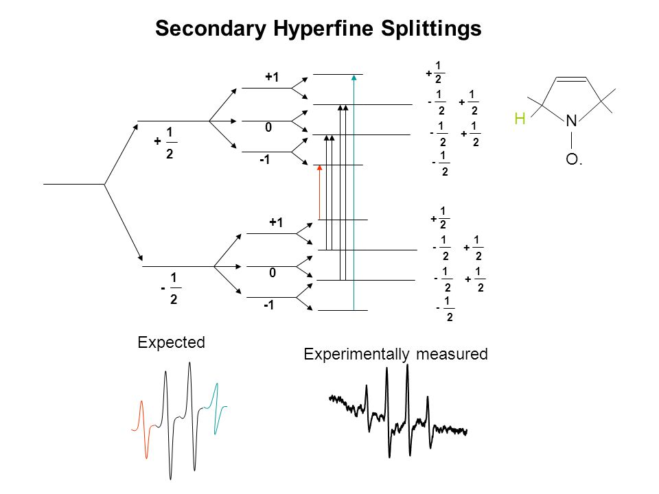 Secondary Hyperfine Splittings