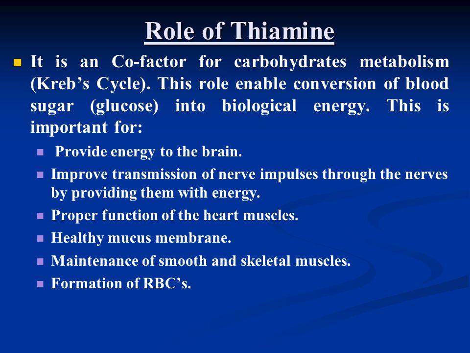 Role of Thiamine